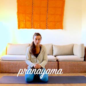Meditacion. Pranayama