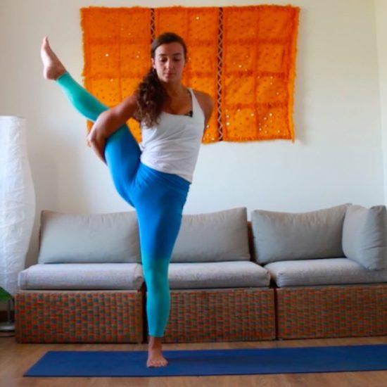 Pajaro paraíso fuerza flexibilidad equilibrio