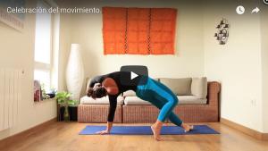 Celebracion de yoga avance
